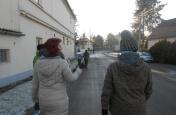 Novoroční pochod
